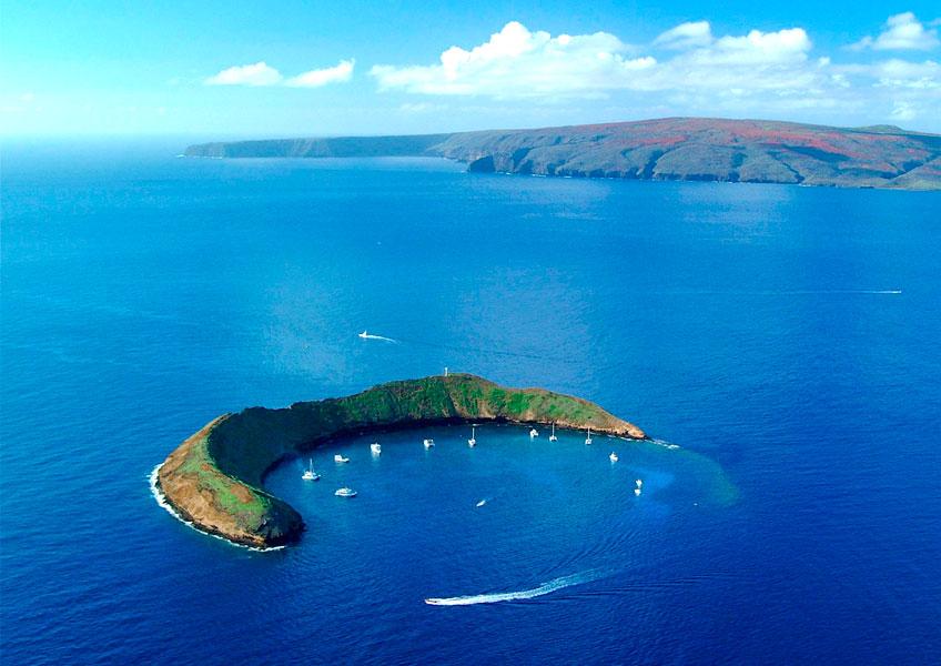 칼립소 - 몰로키니섬 스노클링 크루즈 투어 (오전/오후 선택가능)