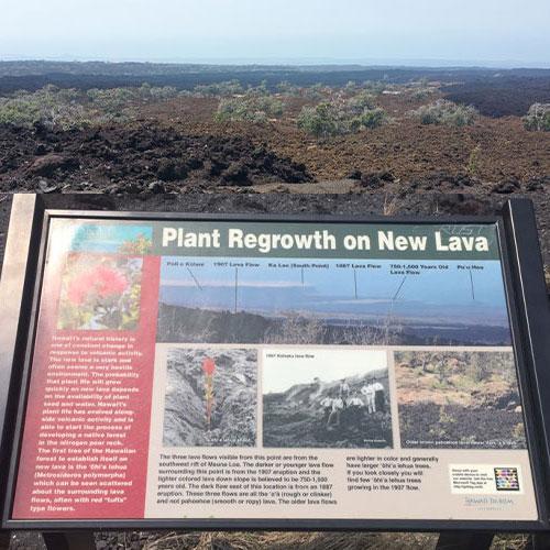 화산이 만들어낸 한폭의 그림 - 하와이 벨트로드 (Hawaii Belt Road - Oceanview Scenic Point)