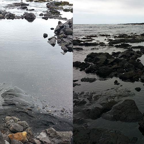 푸우날루우 블랙샌드 비치 (Punalu'u Black Sand Beach)