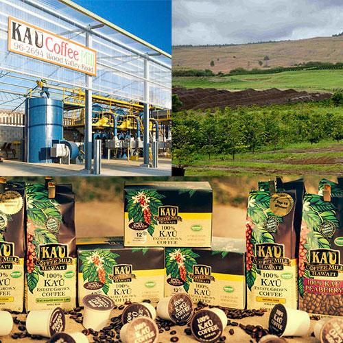 카우 커피 농장 (KAU Coffee Mill)