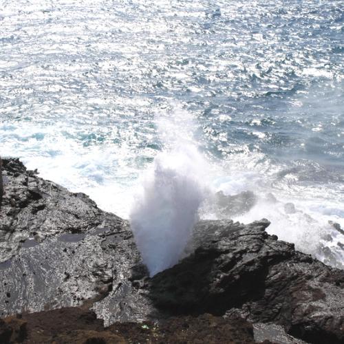 오아후섬 동쪽 일주