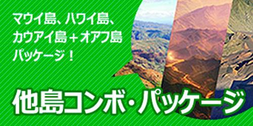 他島コンボ・パッケージ