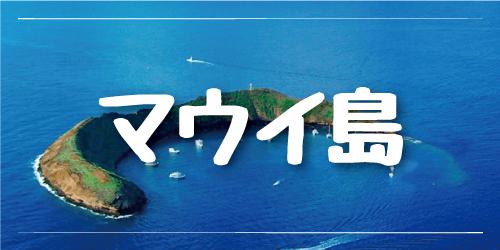 マウイ島ツアー