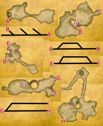 ワンダーの樹海マップ