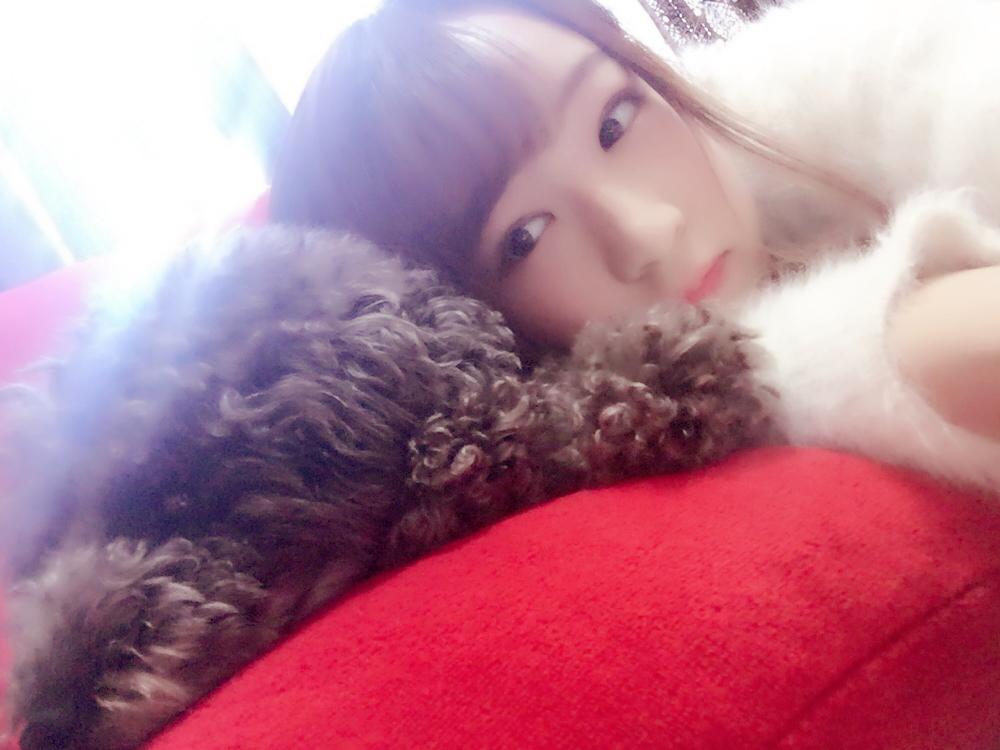 Shioriちゃんの写真7