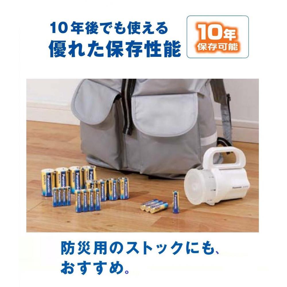 Panasonic EVOLTA AA alkaline battery 12 pcs pack LR6EJ/12SW