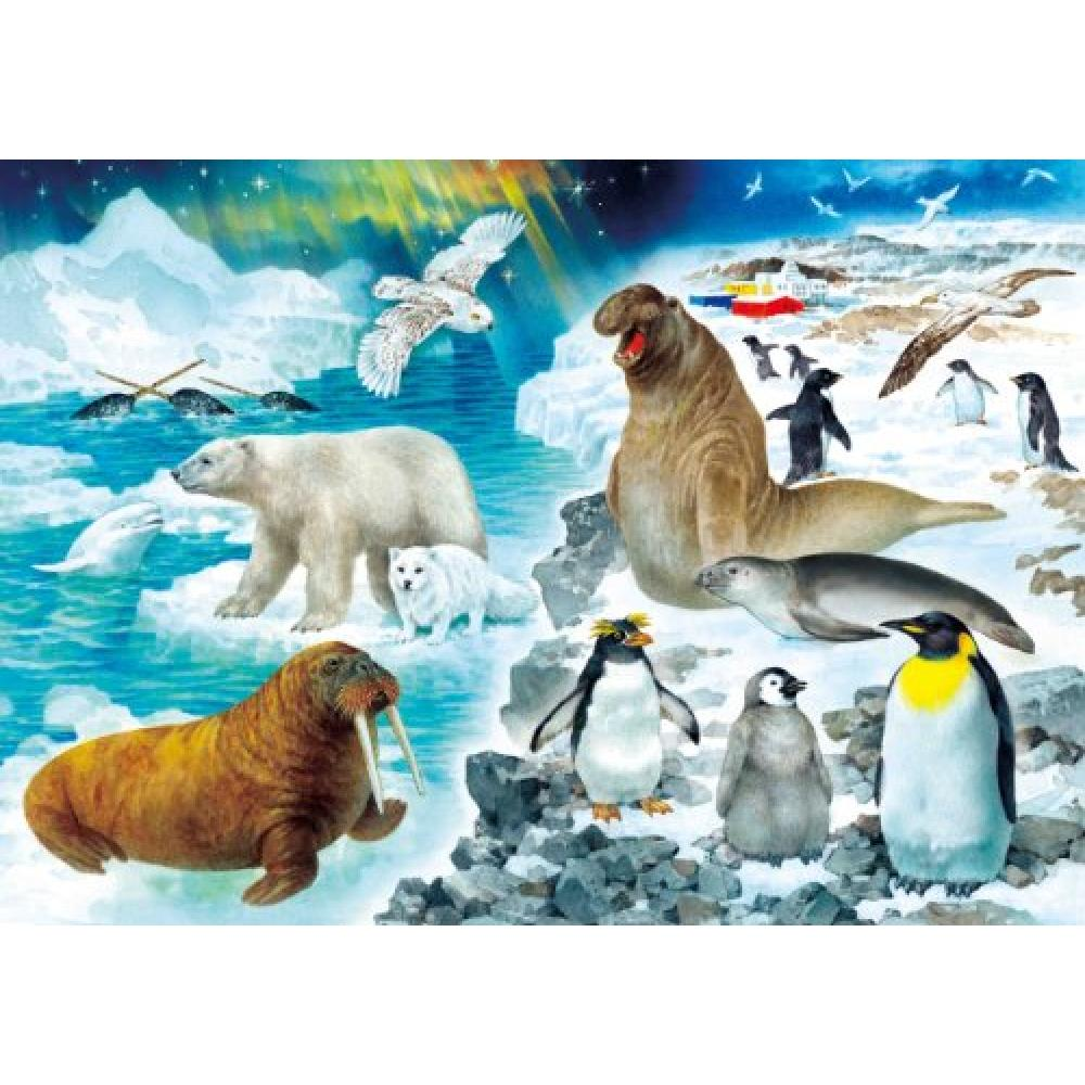 World of Kumon of jigsaw puzzle STEP4 explore animal