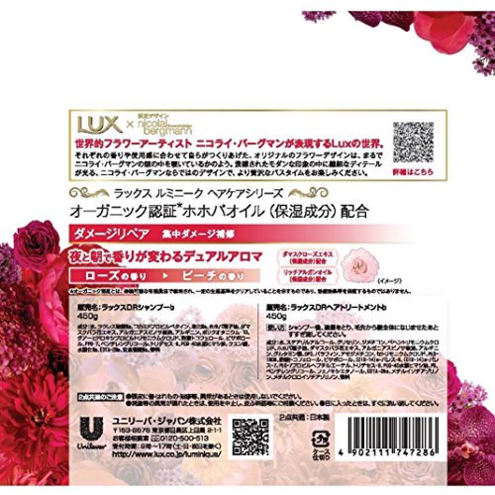 Luxe Luminique Damage Repair Pump Pair Limited Design (Shampoo 450g + Treatment 450g)