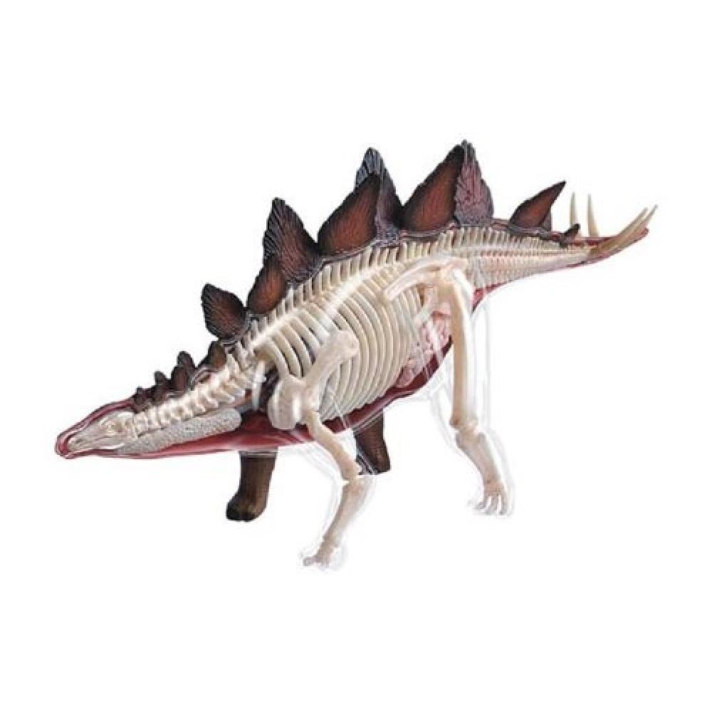 Aoshima Bunka Kyozaisha Skynet 3D puzzle 4D VISION Animal anatomy No.25 Stegosaurus anatomical model