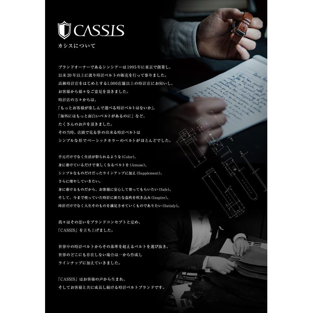 CASSIS Stainless Steel Watch Belt MESH MAGNETIC Mesh Magnetic Apple Watch Apple Watch 38mm Case Silver X1038304012038