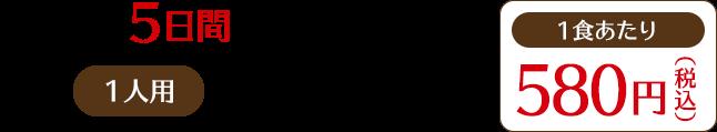 日替わり5日間コース(月〜金) 1人用:税込2,900円(1食あたり:税込580円)