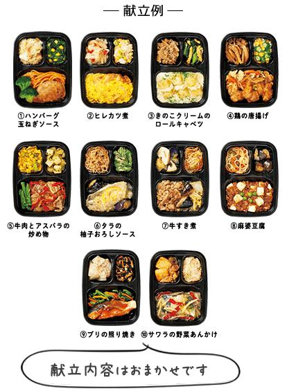 いつでも三菜 【お試し割】10食セット 献立例