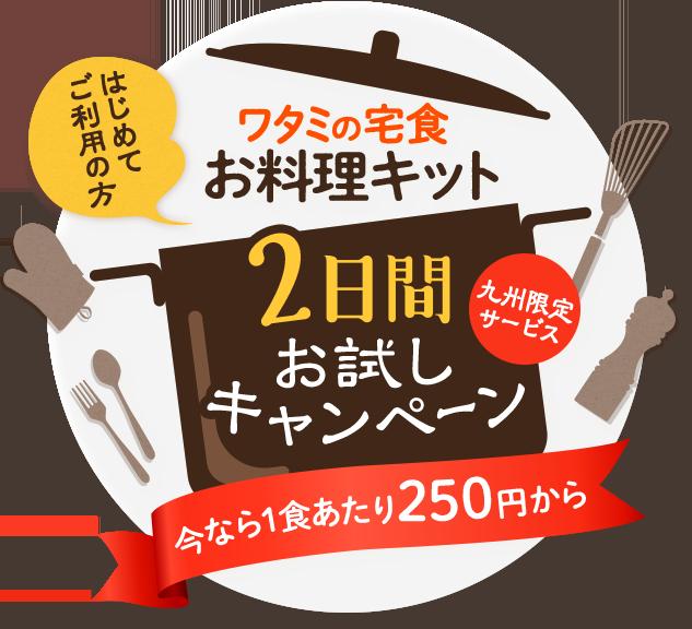 初めてご注文の方限定!ワタミの宅食お料理キット 2日間お試しキャンペーン