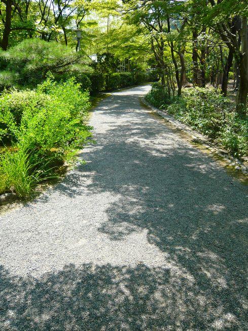 有楽苑の小道