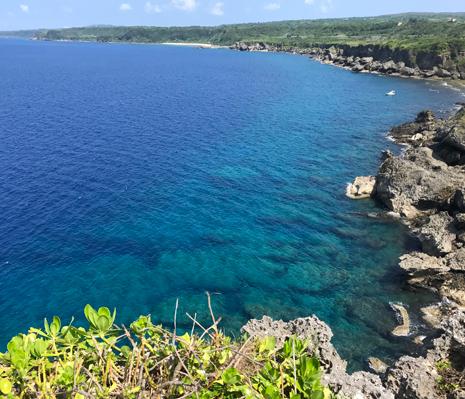 沖永良部島における腎移植医療 -離島における腎移植医療から学ぶ-