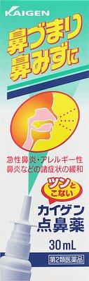 カイゲン点鼻薬の写真