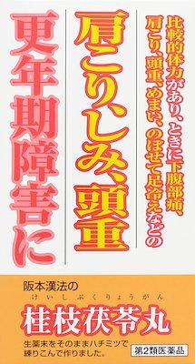 阪本漢法の桂枝茯苓丸300の写真