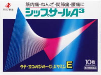 シップサールA3の写真