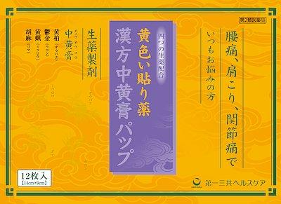 漢方中黄膏パップの写真