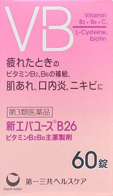 新エバユースB26の写真