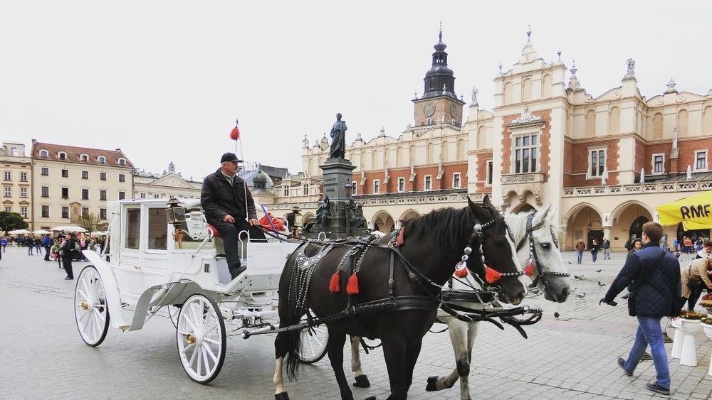 旅行記 ショパンの音楽を巡る旅?ポーランド周遊