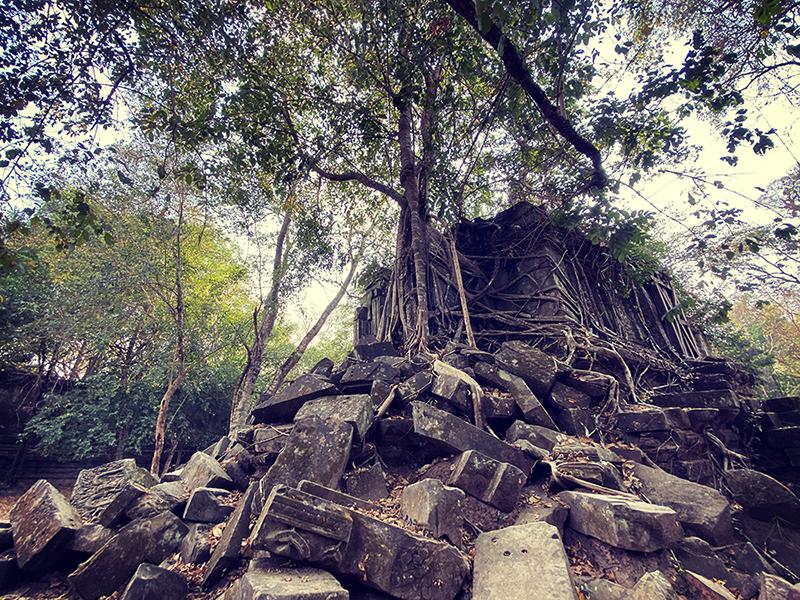旅行記| 大自然・グルメ・スパなど大満喫!姉弟で行くカンボジアの旅?