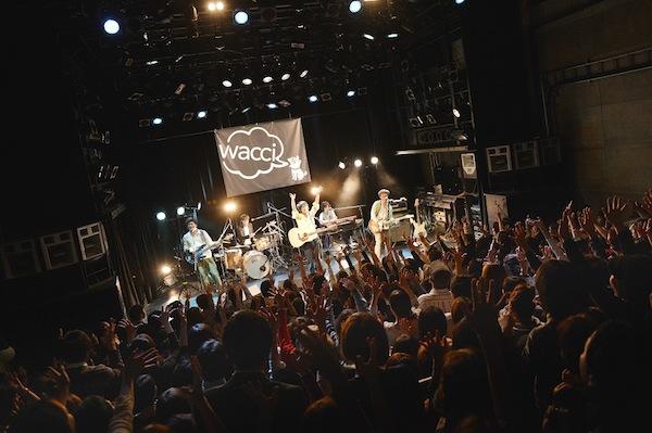 新人バンドwacci、渋谷WWWで初のワンマンライブ開催