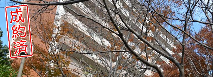 【成約済】新浦安徒歩5分 家族向けに最適な防音ルーム付広々分譲賃貸