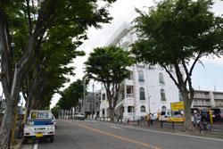 物件写真 宮崎台メゾン・ド・バッハ03