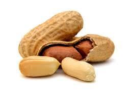 ピーナッツ食べ夫
