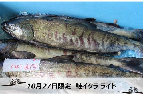 鮭がメインの福興市