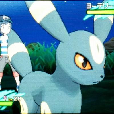 b@pokemon.mastportal.info