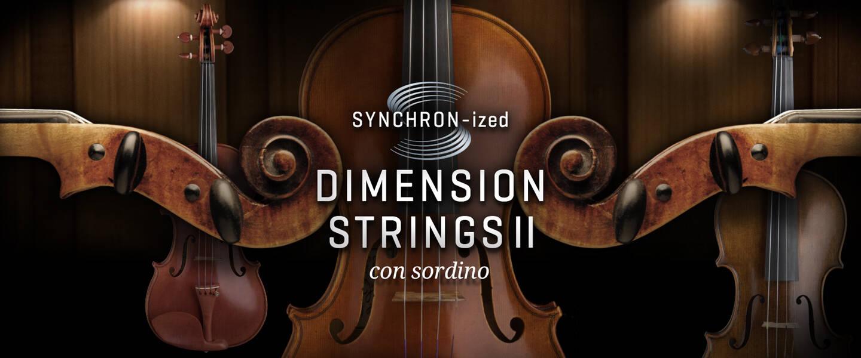 Synchro_DimensionStrings_II