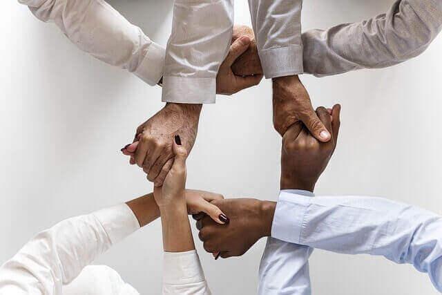 専門追求型・組織貢献型とは?意味や特徴、違いを知って自己診断結果を活用する