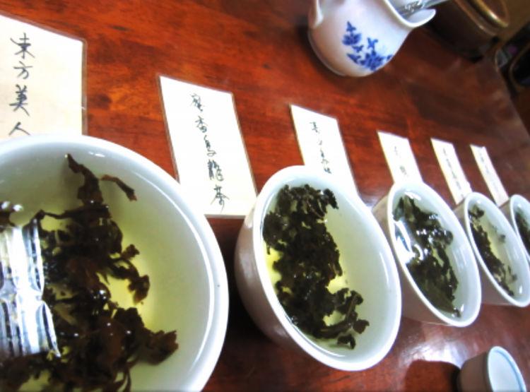 6〜7種類のお茶をテイスティングさせてもらえる[画像提供・Yさん]