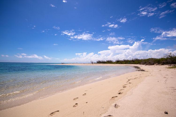 無人島で遊ぶのは最高の体験