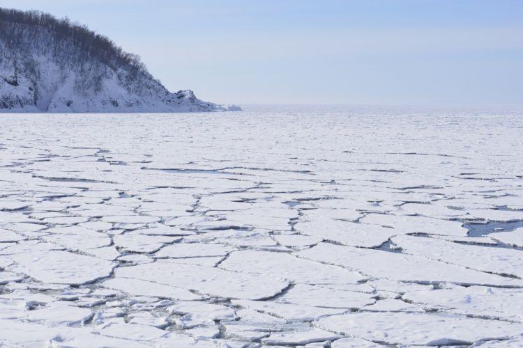 自然が生み出す神秘的な光景!流氷が発生するメカニズム