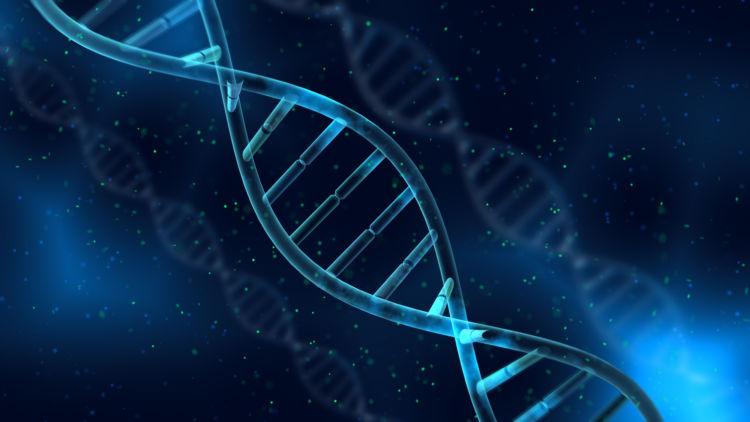 遺伝子解析から未来の病気を予測する?