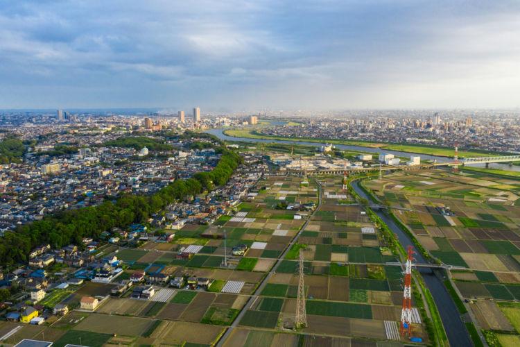住宅街に残る都市農地