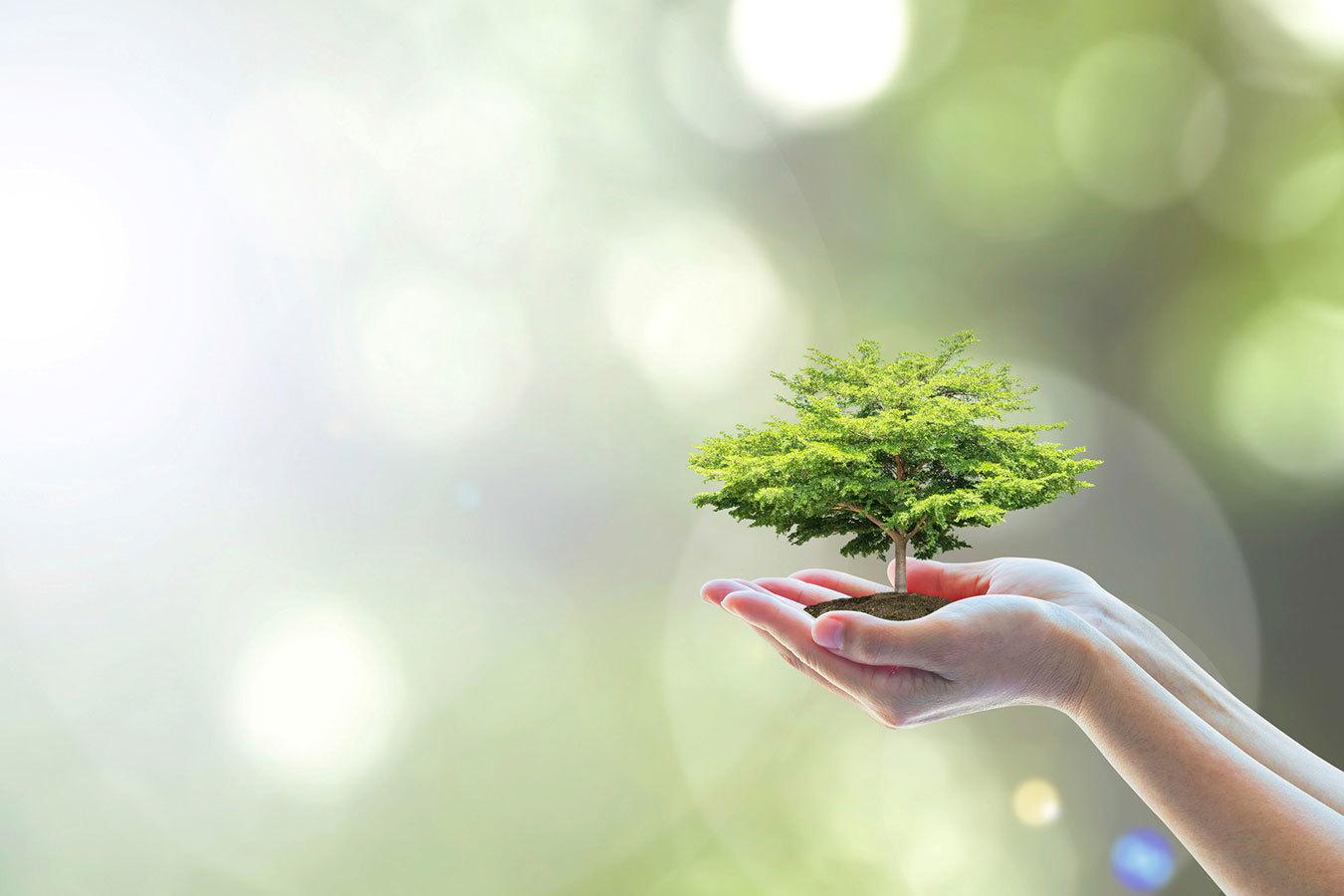 未来は脱プラスチックの世界へ。植物由来への転換