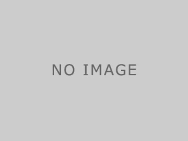 ロータリーバンドソー 日立工機 CB12VA2_画像5
