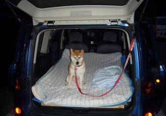 ホテルもいいけど、今日は車で!今流行りの?車中泊のすすめ。