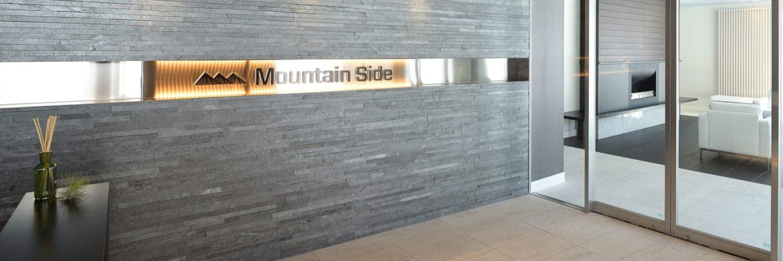 Mountain Side 050