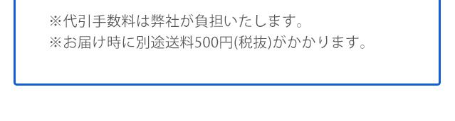 ※代引手数料は弊社が負担いたします。 ※お届け時に別途送料540円がかかります。
