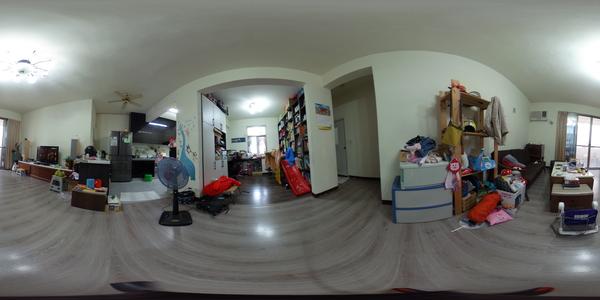 B124龍興精美公寓美宅
