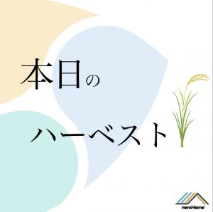 本日のハーベスト結果報告!