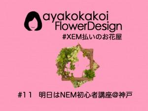 #11 明日はNEM初心者講座@神戸〜XEM払いのお花屋〜