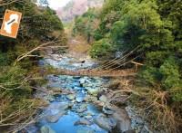かずら橋 | 徳島県三好市西祖谷-nem459