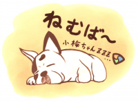 kumakoさんに小梅ちゃんイラストを描いて貰いました☆