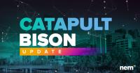 カタパルトバイソンの更新がリリース